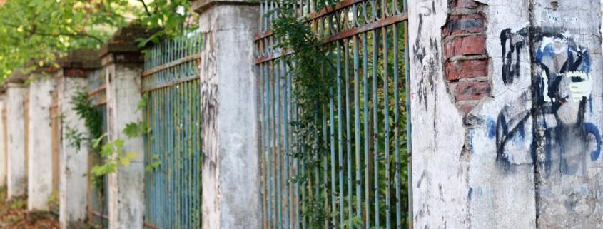 Gartenmauer-alt